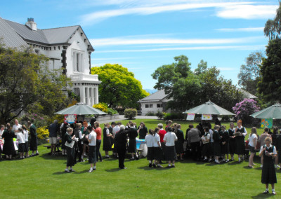 Market Day in the lawn